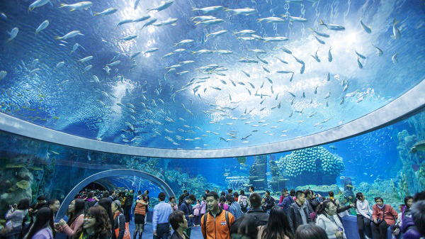 7. National Oceanographic Museum of Vietnam